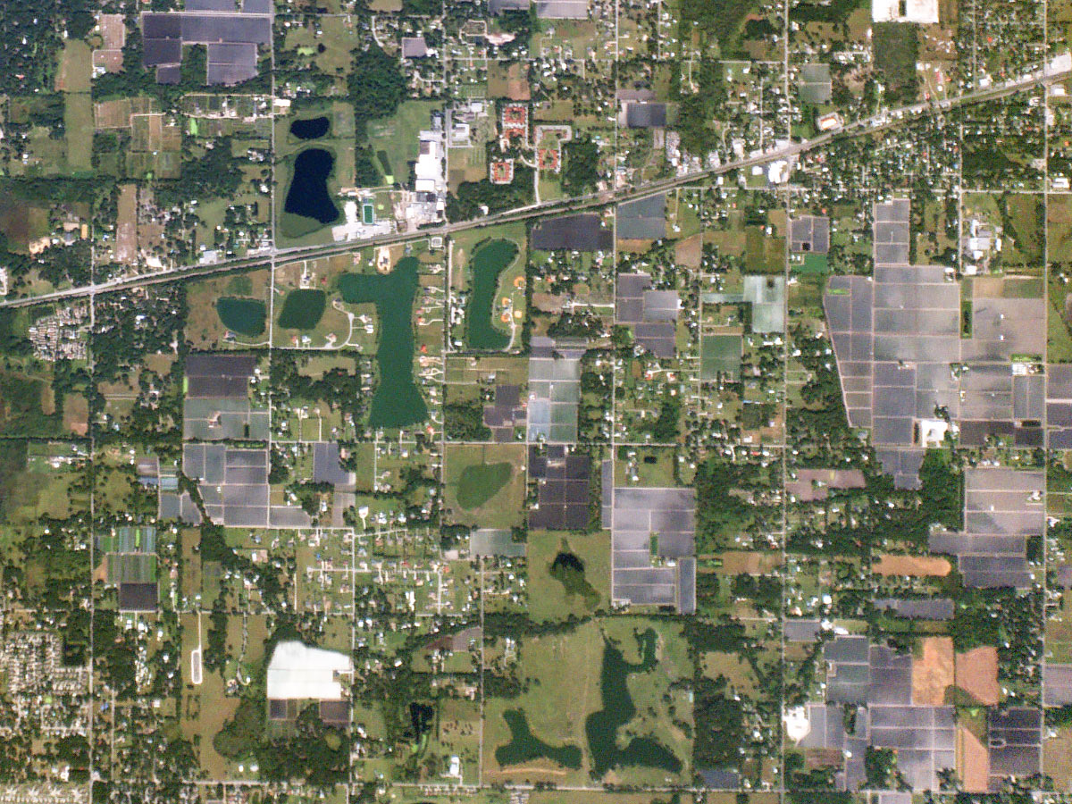 florida-strawberries from dove satellite